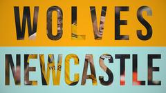 Wolves 1-1 Newcastle United | Alternative Highlights