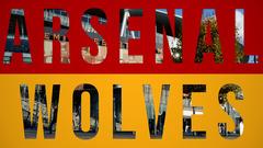 Arsenal 1-1 Wolves | Alternative Highlights