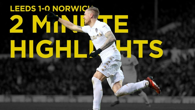 2 MINUTE HIGHLIGHTS | LEEDS VS NORWICH