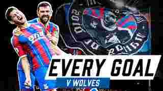 Every Premier League Goal v Wolves