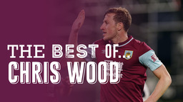 THE BEST OF   Chris Wood